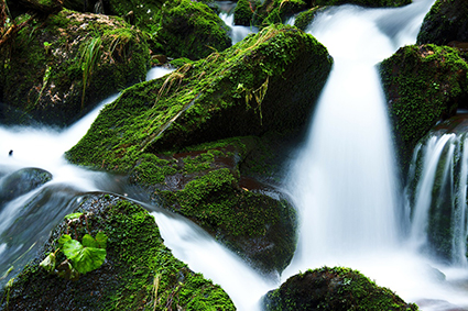 Waterfall over mossy rocks. Photo.