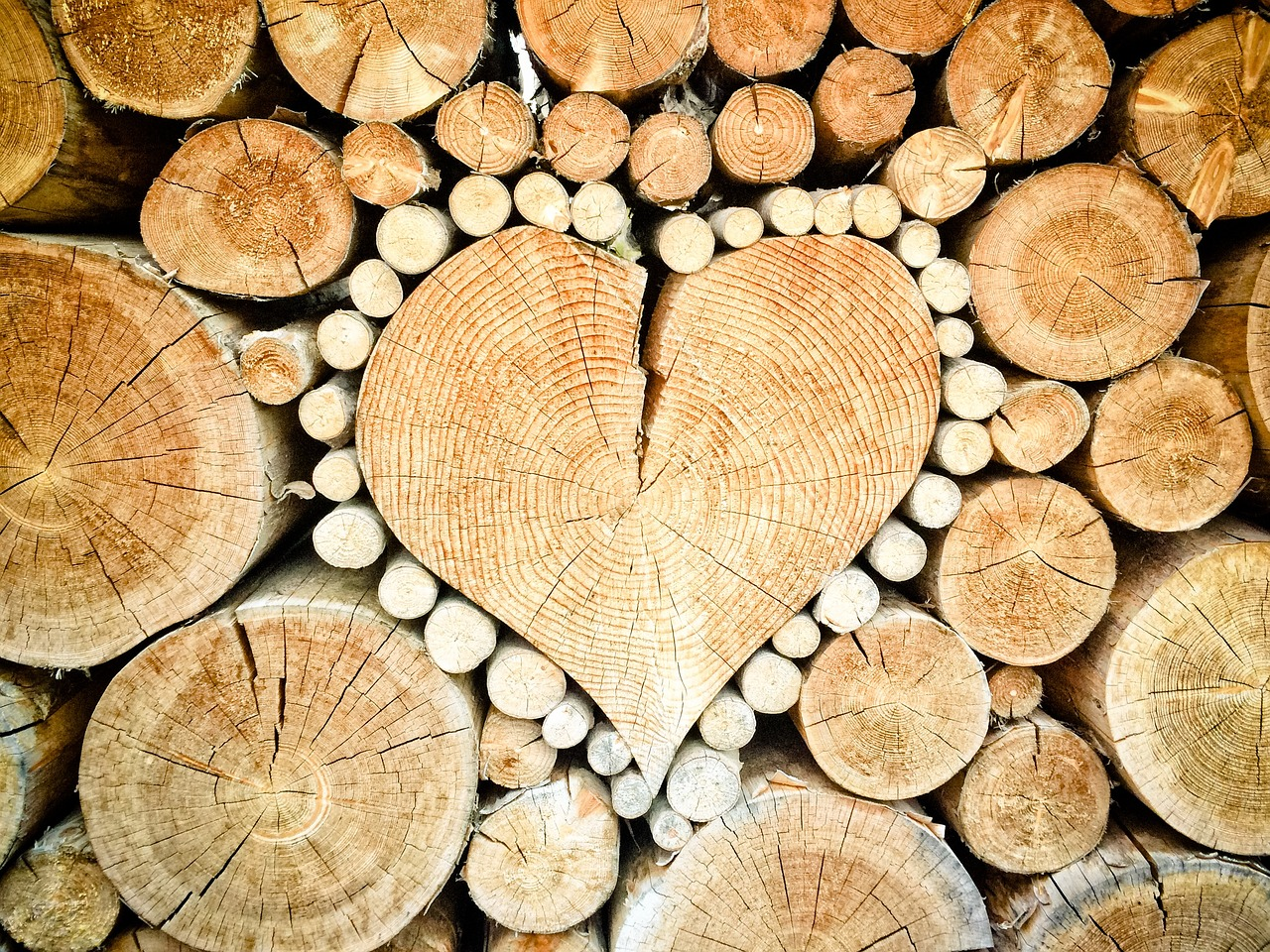 Timber stapled in the shape of a heart. Photo.