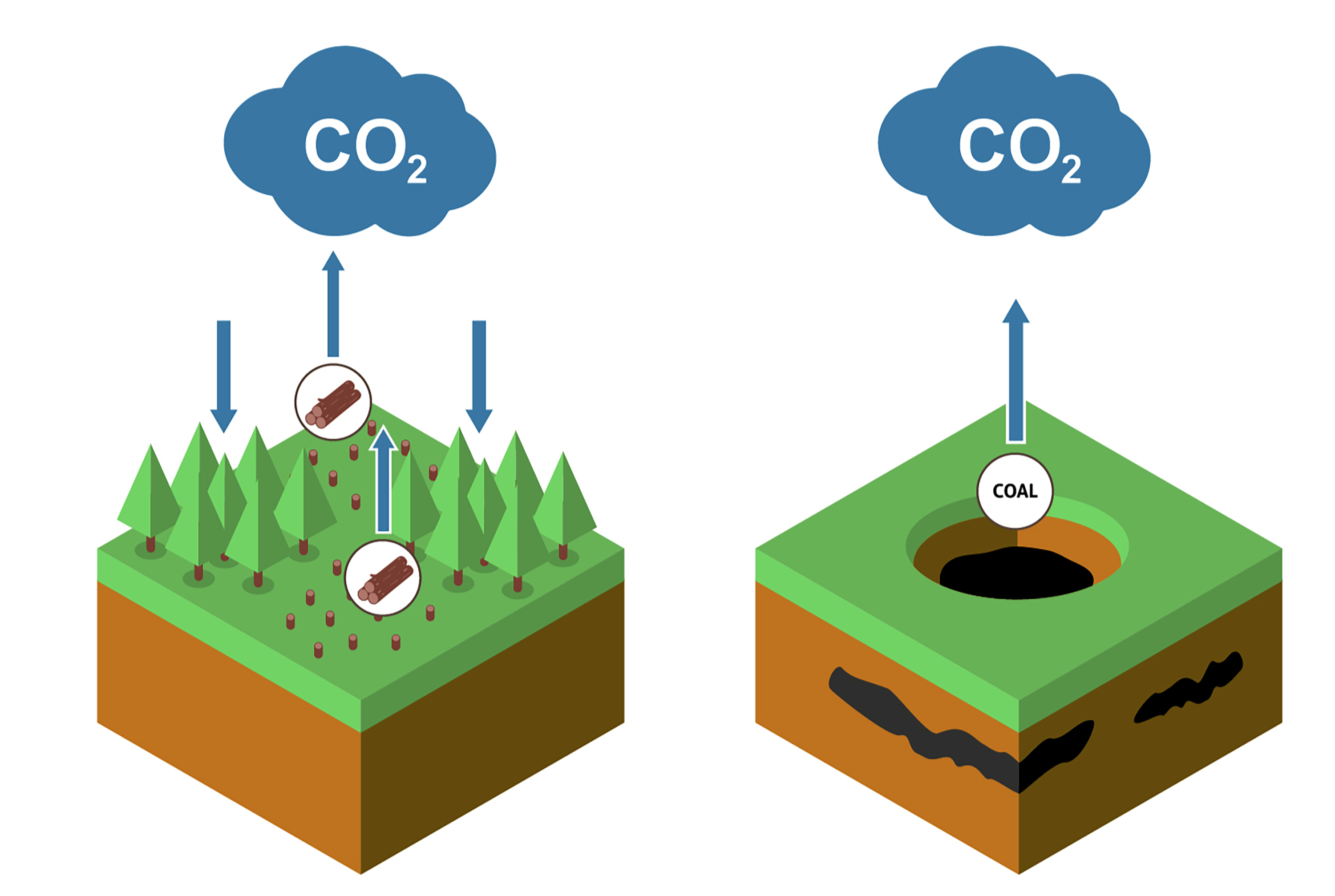 """CO2"" pointing at segment of earth and trees. Illustration."