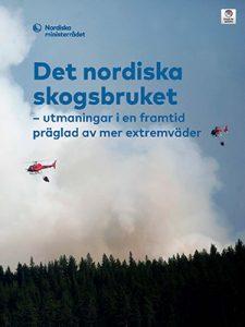 Forest on fire with rescue helicopters hovering. Photo.