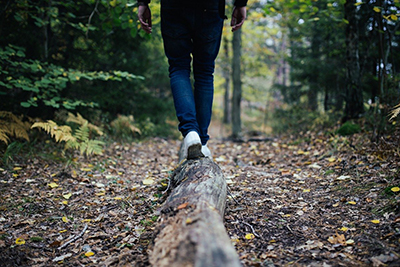 Person walking on treelog in forest. Photo.
