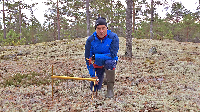 Man sitting in forest with a measuring instrument. Photo.
