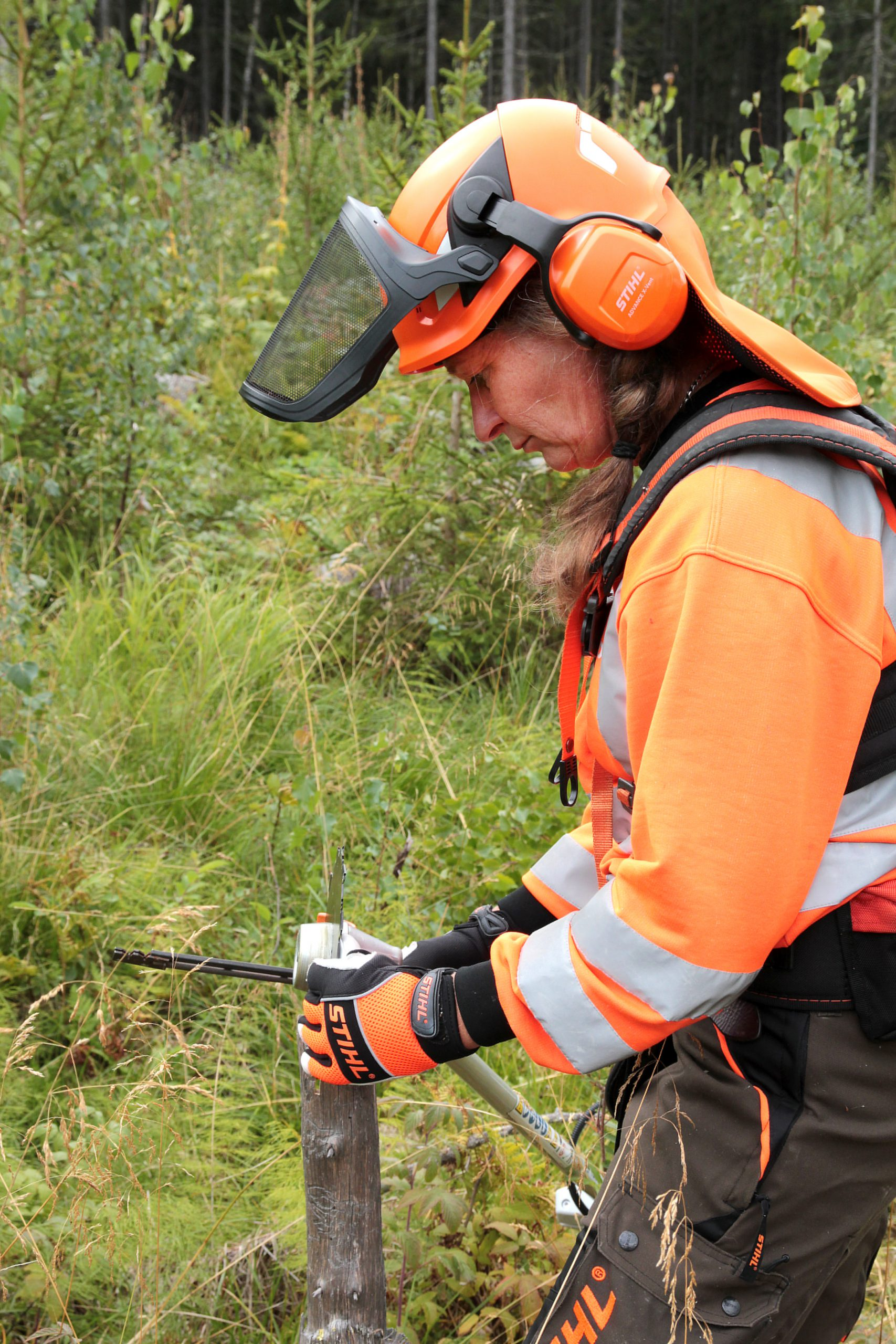Woman in forest wearing orange protection gear. Photo.