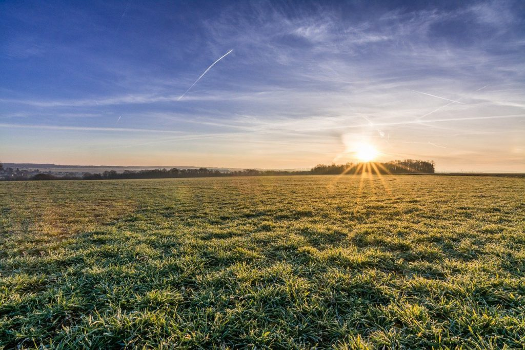 Scenic view of open field in sunset. Photo.